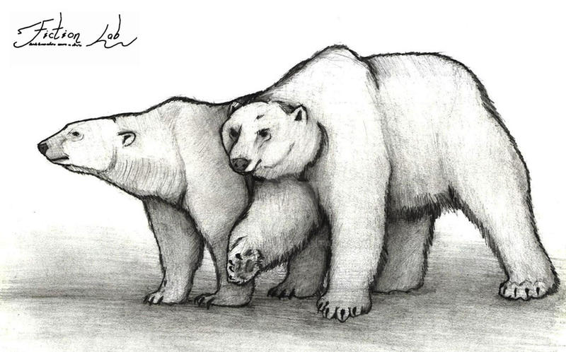 Big Bears by Kawekaweau