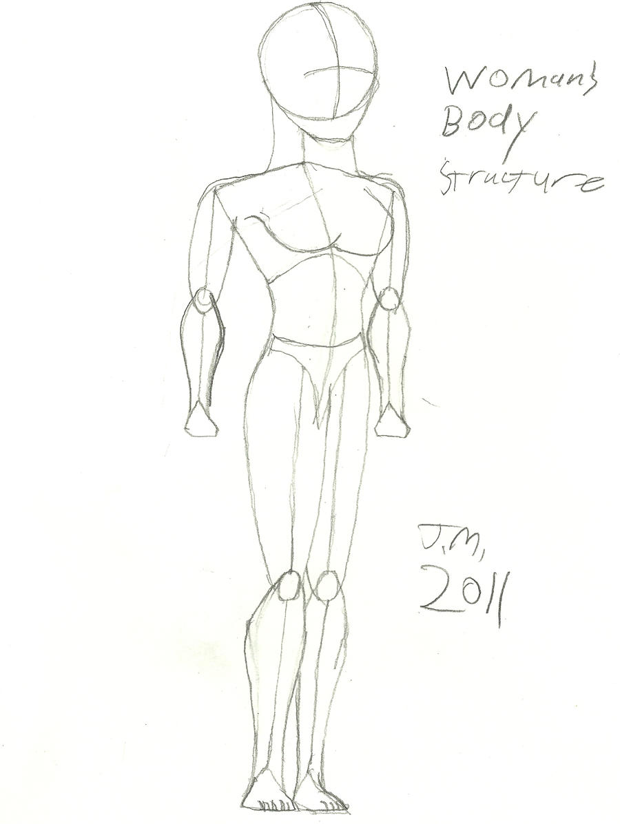 Woman Body Structure