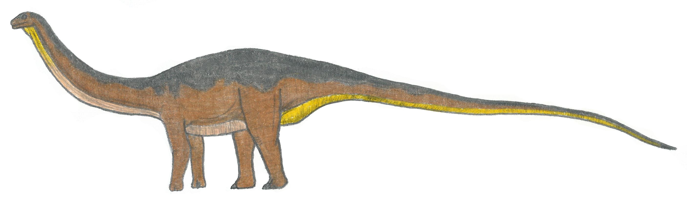 Apatosaurus by Venofoot on DeviantArt