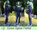 Grave Hyena Partial Commission