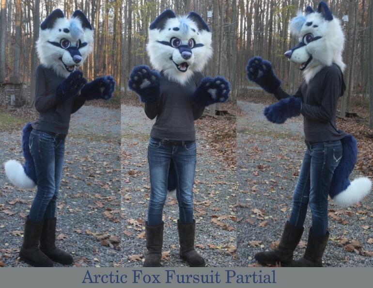 Arctic Cat F Owner