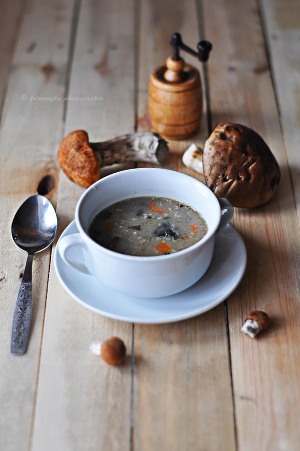 Fungi soup by fotografka