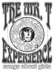 Mr T. Experience by rodakrodak