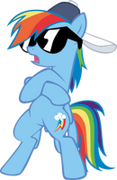 MLP: Rainbow Dash Radicalness by Ookami-95