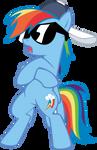 MLP: Rainbow Dash Radicalness