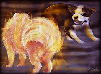 Pom vs Dog by Blusagi