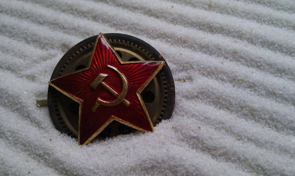 Pin of the Gearworkers' Union