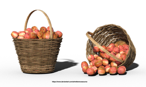Free Stock PNG:  Apples in Basket