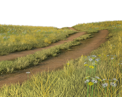 Free Stock PNG:  Grassy field with dirt road
