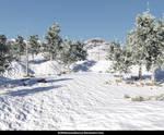 Free Stock JPG: Snow covered winter landscape