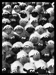 Sheep! by raihaneh90