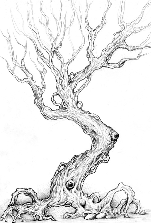 tattoo scary tree drawings sketch coloring page