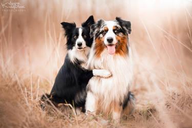 BEST FRIENDS! by KristynaKvapilova