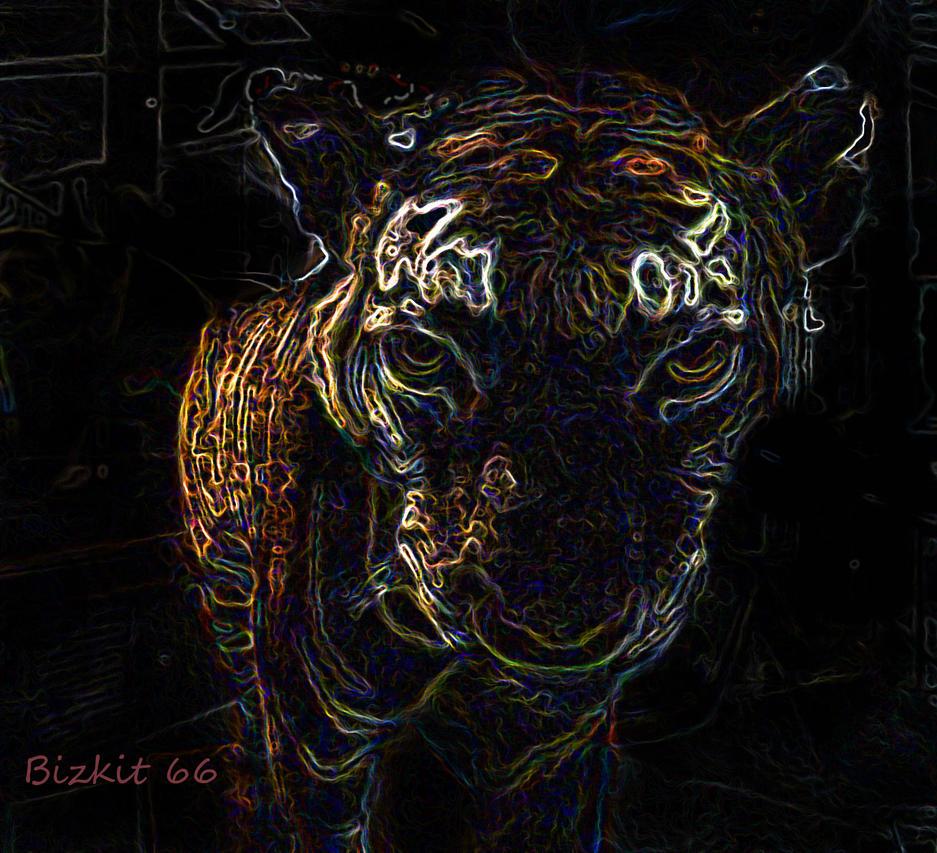 Burning bright by Bizkit66