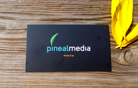 Pineal Media Business Card by Kyyuulle