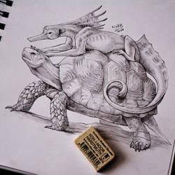 Hikitiki and turtle