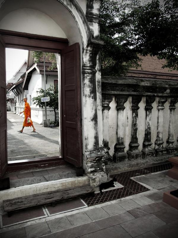 Serenity in Wat Rachanadda by Networ-k