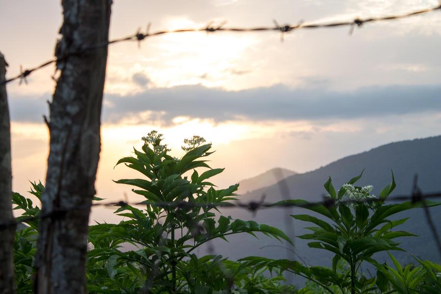 Sunrise by silverboy65