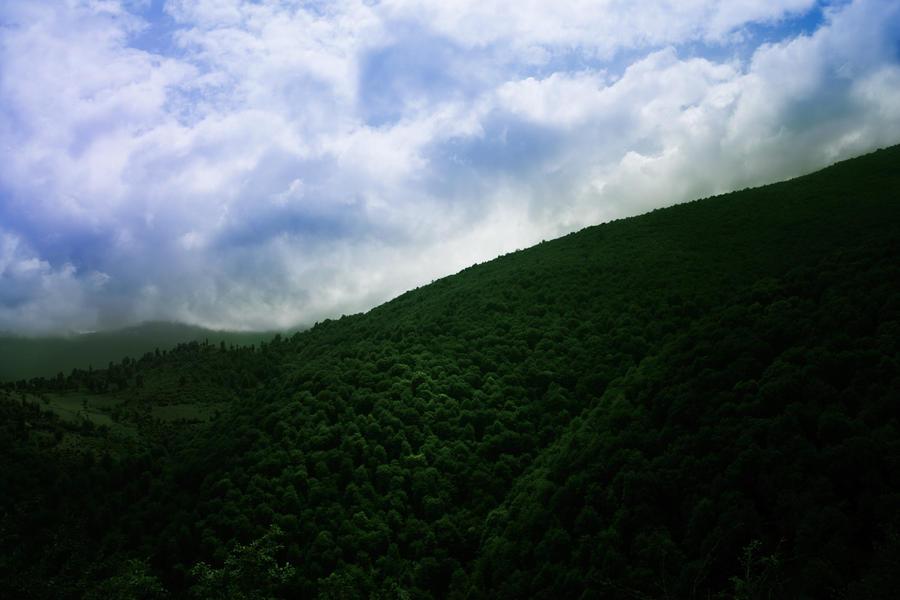 Landscape by silverboy65