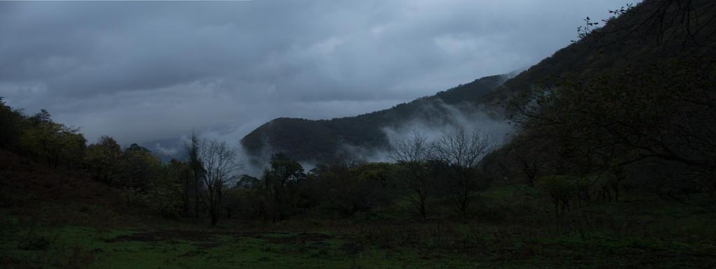 fog by silverboy65