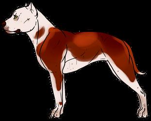 Gator-Kennels | DeviantArt