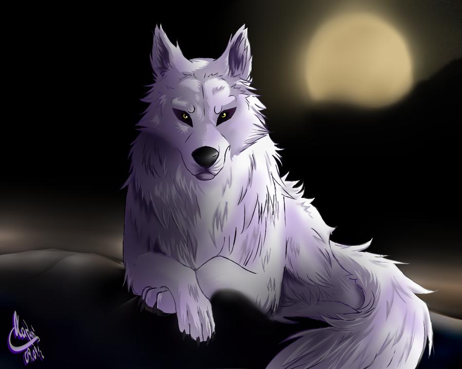 White Wolf Aniu By KazumiNoMegami