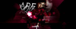 +lily collins news by st4ticrain