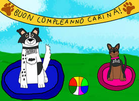 Birthday gift for Carina