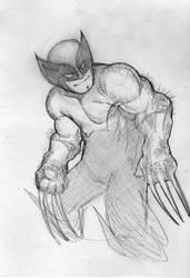 Wolverine sketch by mw777