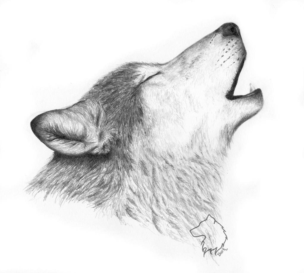 Howler by Dark-Lioncourt