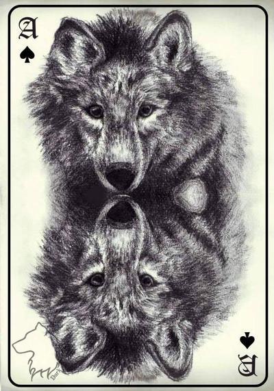 Ace by Dark-Lioncourt