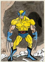 Wolverine in deadly cave