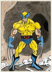 Wolverine in deadly cave by marcelinorodriguez