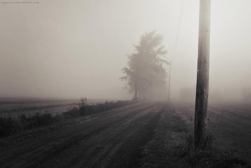 Foggy Morning II by EugenieA