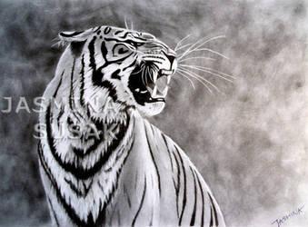 My Tiger by JasminaSusak