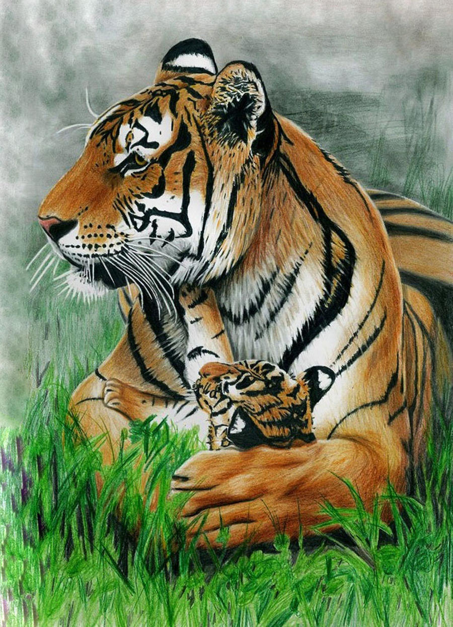 """tiger mom journals How does it affect children paper in the journal child the academic success of asian american children is the prevalence of """"tiger moms"""" like amy."""