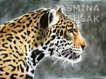 Drawn Jaguar by JasminaSusak
