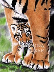 Tiger's Baby by JasminaSusak