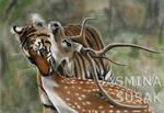 Tiger and his Prey
