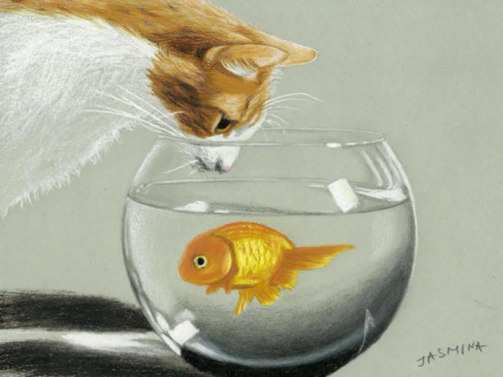 Cat with aquarium fish in colored pencil by JasminaSusak