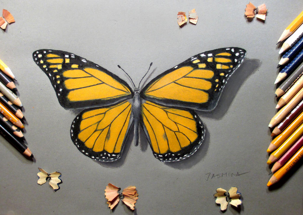 Butterfly in colored pencil by JasminaSusak