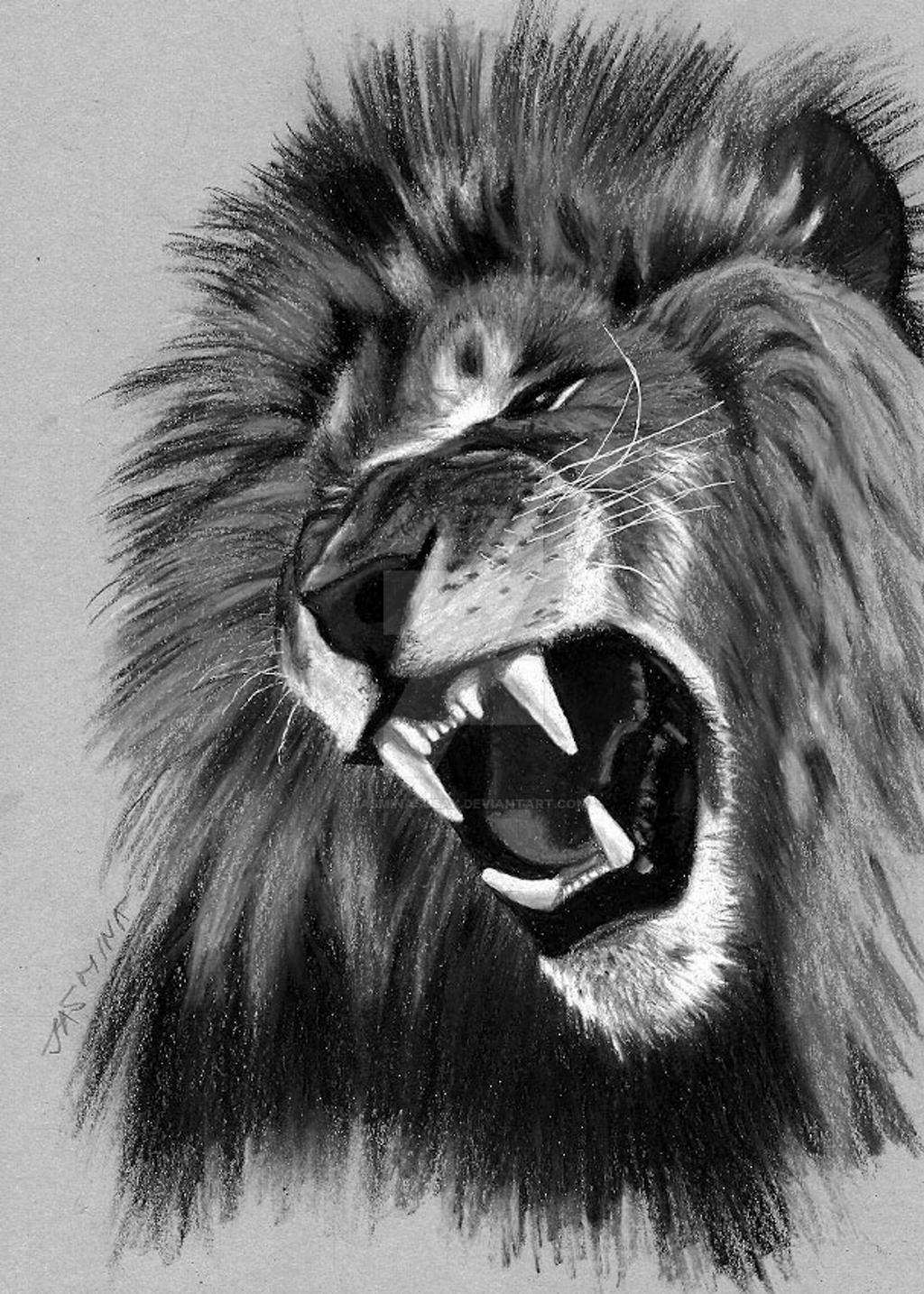 Tribute Drawing to Cecil The Lion by JasminaSusak on ...