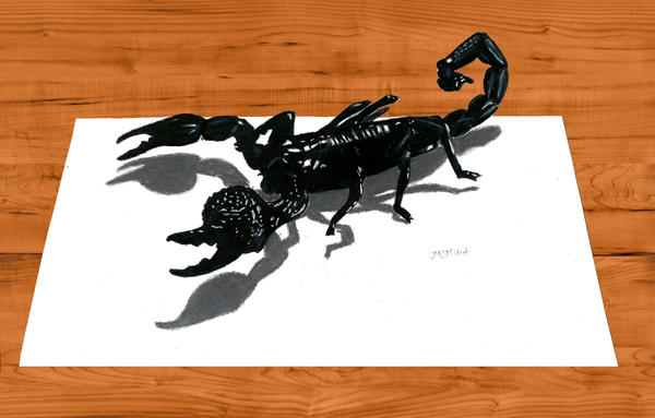 3D Pencil Drawing: Emperor Scorpion by JasminaSusak