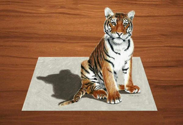 3D Colored Pencil Drawing of young Tiger
