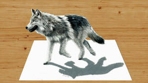 Walking Wolf 3D Pencil Drawing