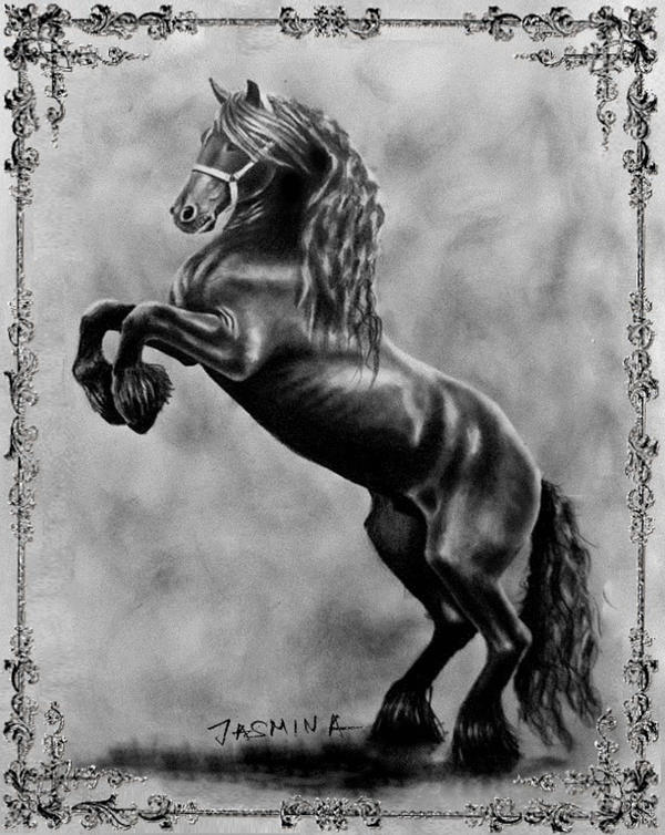 how to draw wild horses book