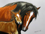 Colored Pencil drawing: Horse with Baby
