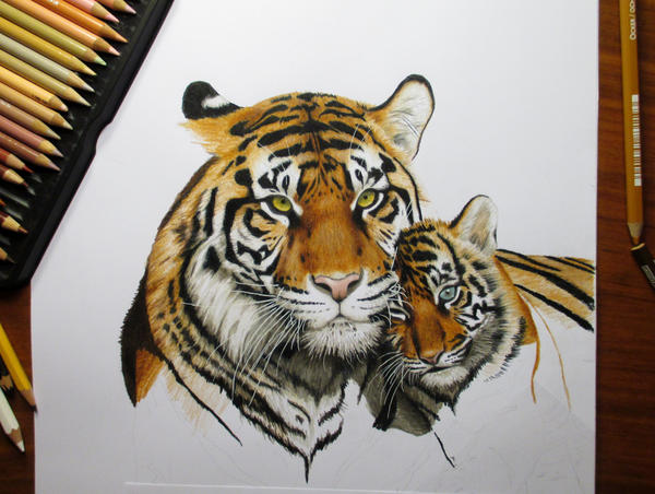 Work in progress: Colored pencil drawing