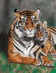 Colored Pencil Drawing: Tigress with Tiger Cub by JasminaSusak