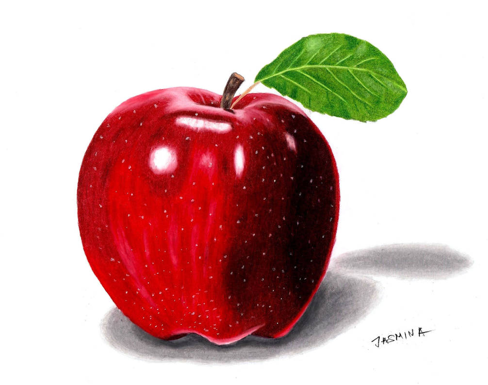 Colored pencil drawing of an apple by jasminasusak